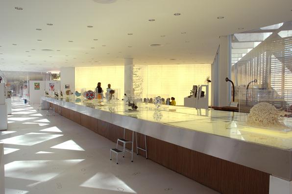exposicao-museu-de-microbiologia