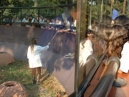 Atividade Mão na Cobra no Instituto Butantan