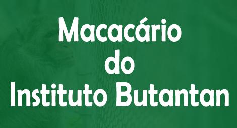 macacario-instituto-butantan