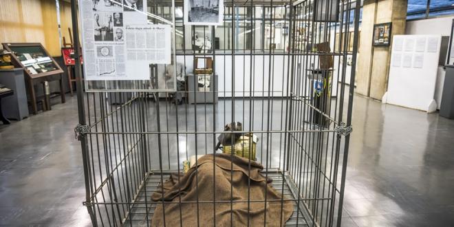 museu-da-policia-civil-no-butanta