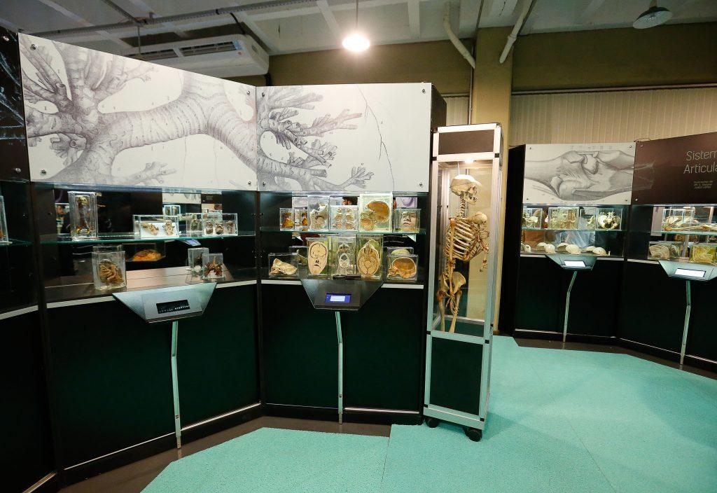 museu-de-arqueologia-da-usp-no-butanta