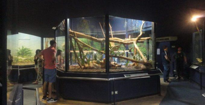 dentro-do-museu-biologico